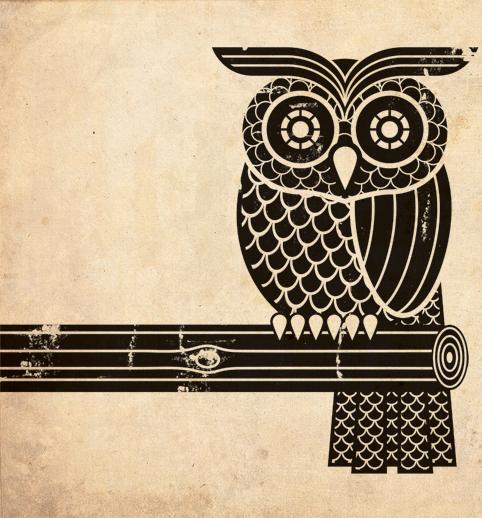 owlillustration